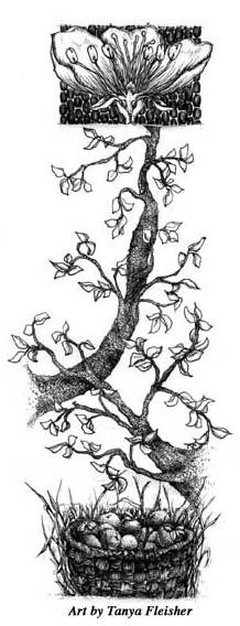 0402_tree
