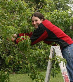 Bri Picking Peaches