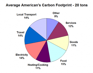 Average American's Carbon Footprint
