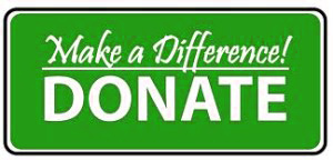 Donate-Now-button-300x144