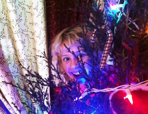 Aurelia happily peeks out from behind the newly-decorated Solstice tree. Photo by Ted.
