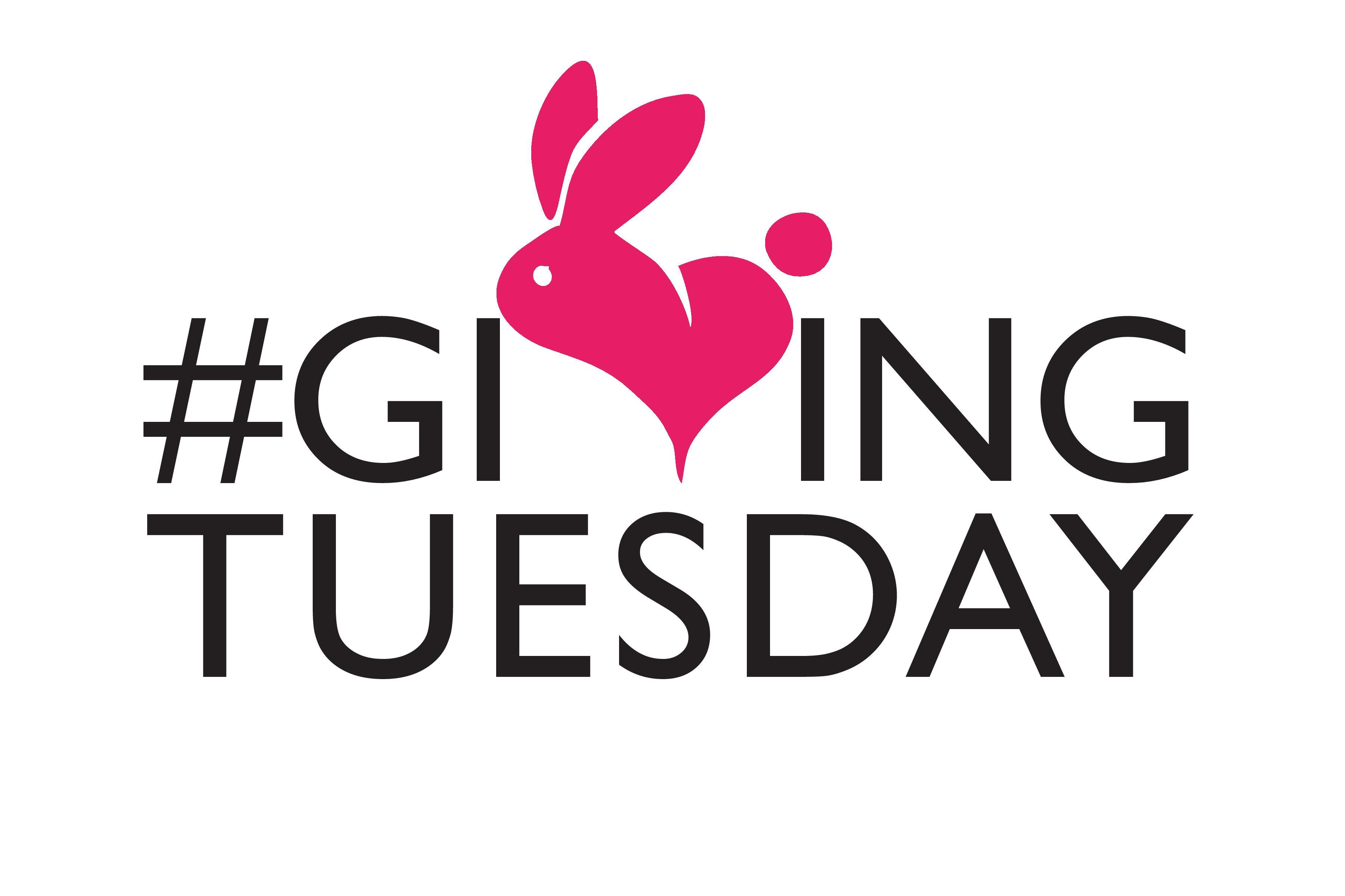 Giving Back on #GivingTuesday – November 28, 2017