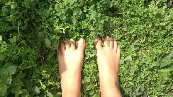 Prairie Feet in Grass